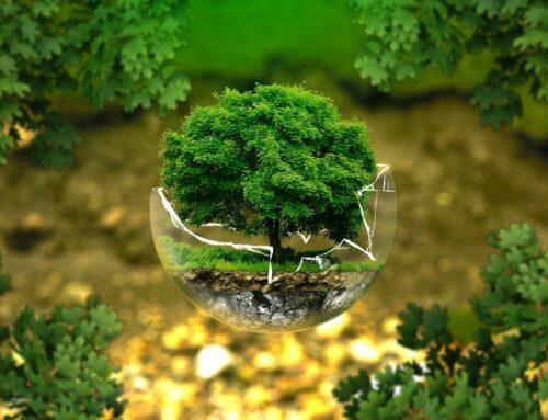 Urval av Miljö, risk och säkerhets projekt